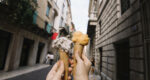 best rome walking tour